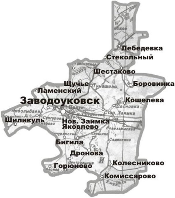 Проектная деятельность в Заводоуковском городском округе. Тюменская Область